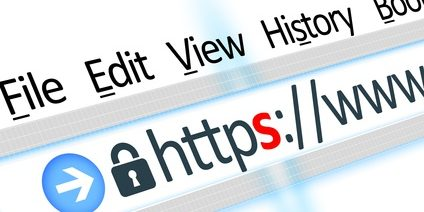 Secured connection link web browser detail